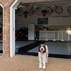 A dog shows off his owner's 3-car Free-Flow garage